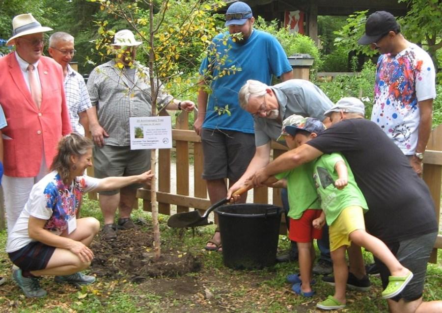 20th tree planting kdis helping
